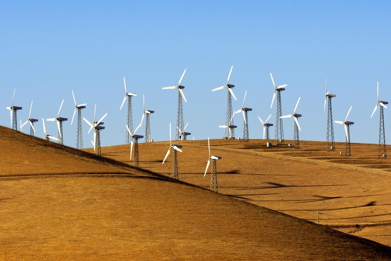 Vetrne elektrarne imajo lokalno lahko negativne podnebne vplive